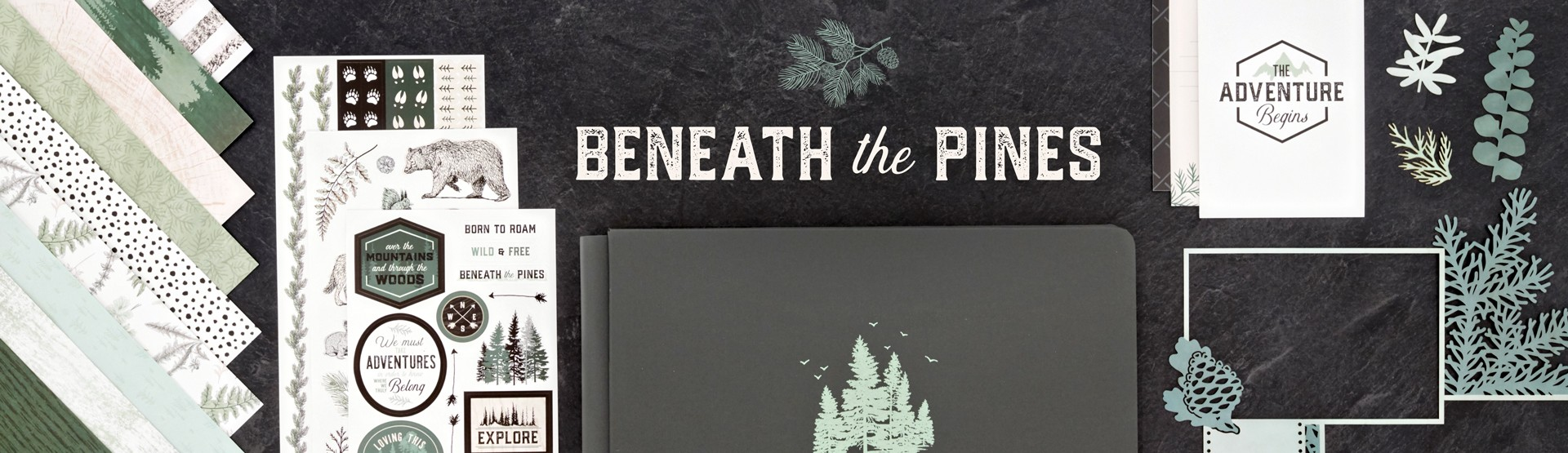 Forest & Outdoors: Beneath the Pines